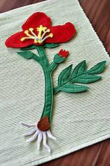 - Časti kvetu - 6467964_