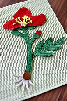 Hračky - Časti kvetu - 6467964_