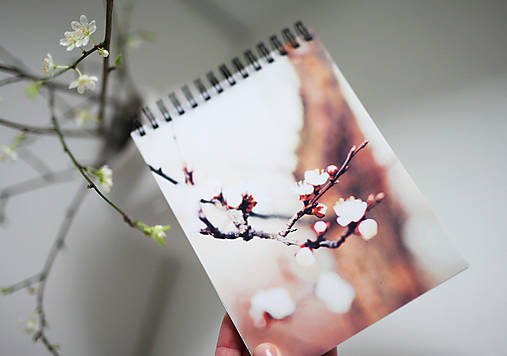 Linajkový zápisník - Príbeh