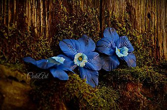 Obrazy - Orchideové vábenie - obraz na plátne - 6485709_