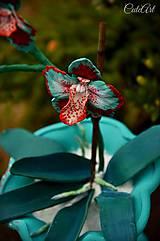 Orchidea v snehu - dekorácia (kvet)