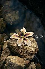 Biela orchidea II. - séria obrazov na plátne