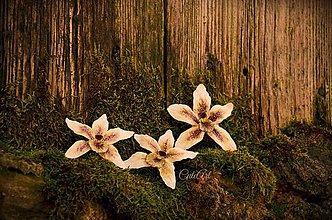 Obrazy - Biela orchidea - séria obrazov na plátne - 6505403_