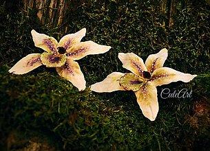 Obrazy - Biela orchidea II. - obraz na plátne - 6505469_