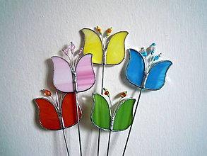 Dekorácie - Tulipánovec  jarní - 6547298_