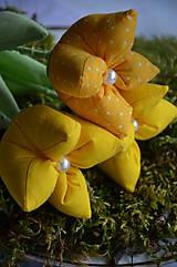 Dekorácie - Tulipán žltý mix - 6562451_