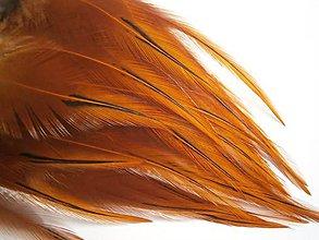 Suroviny - 1-2*34 Oranžové pierka s čiernou špičkou- dlhé- 2ks - 6578988_