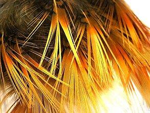 Suroviny - 1-2*40 Pierka so žlto-oranžovou štetinkou- 2 ks - 6590350_