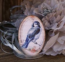 Odznaky/Brošne - Vintage vtáčik - 6605891_