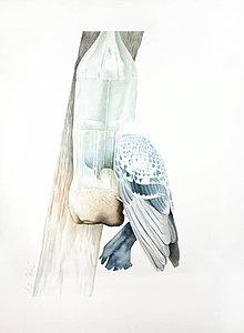 Obrazy - Vetřelec - originál, velký akvarel - 6605880_