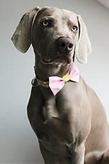 Pre zvieratká - Dvojfarebný retro obojok Gerda - s motýlikom - 6625329_