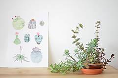 Grafika - Kaktusy A4 - 6630154_