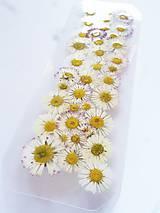 Papiernictvo - Záložka sušené kvety - sedmokráska - 6675660_