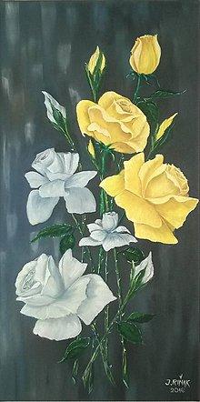 Obrazy - Ruže - 6685355_