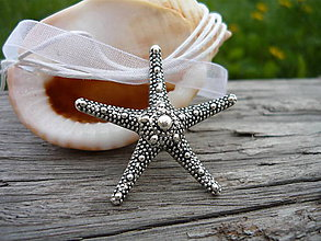 Náhrdelníky - Náhrdelník Mořská Hvězdice - 6691616_