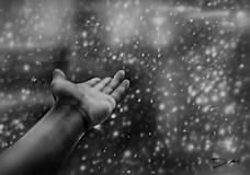 Obrazy - Dážď - 6693691_