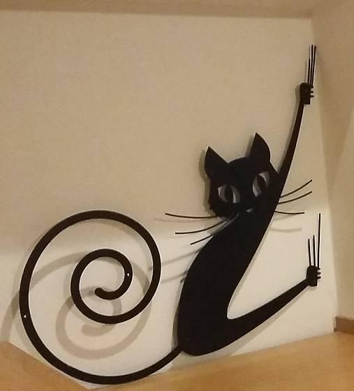 čierne holky mačička fotky
