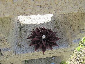Ozdoby do vlasov - Bordový kvet - 6731267_