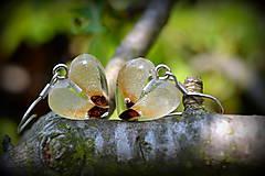 Náušnice - Náušnice Smrekové semienka (1916 D) - 6734421_