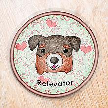Pomôcky - Psia podšálka srdiečková (Bernský salašnícky pes) - 6734010_