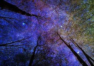 Obrazy - Polnočné predstavenie - 6755698_