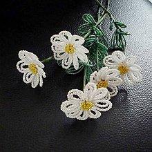 Dekorácie - Kopretinky bílé - 6777092_