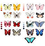 Dekorácie - Svadobné dekorácie / Na krídlach motýľov - 6776976_