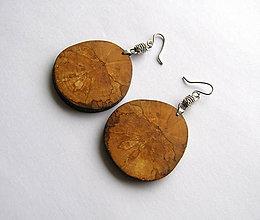 Náušnice - Špaltovaná breza - kruhy - 6778956_