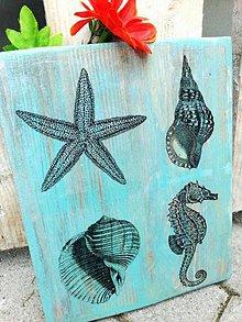 Tabuľky - Tabuľka - Morské živočíchy - 6793626_