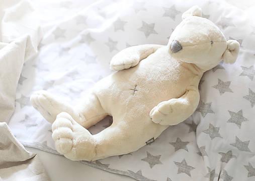 Polárny Medvedík