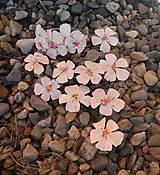 Náramky - jabloňové kvieťa náramok a sponky - 6843863_