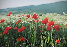 Obrazy - V červených sukničkách - 6852153_