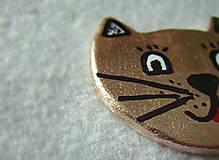 Odznaky/Brošne - Zlatá mačí - 6872582_
