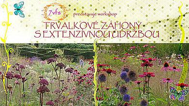 Kurzy - TRVALKOVÉ ZÁHONY S EXTENZÍVNOU ÚDRŽBOU - 6871590_