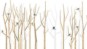 Veľký les a sýkorky