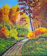 Obrazy - Lesná cesta - 6883965_