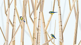 Grafika - Veľký les a sýkorky (modré) - na výšku - 6888307_
