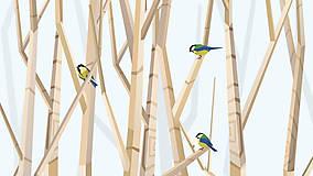 Veľký les a sýkorky (modré) - na výšku