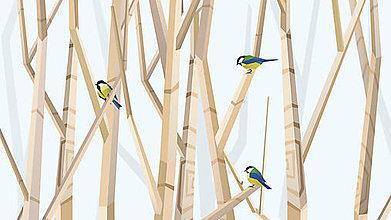 Grafika - Veľký les a sýkorky (modré) - formát na výšku - 6888307_
