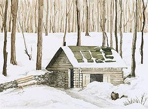 Obrazy - Chata v lese - 6907332_