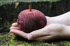 Dekorácie - red tiger apple - 1004015