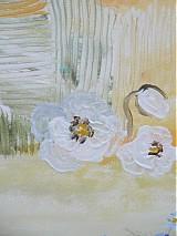 Obrazy - Letom - svetom - 1128517