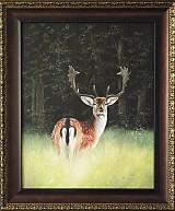 Obrazy - Na okraji lesa - 1135012