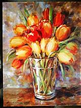- Tulipány - 1253387