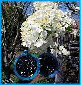 Náušnice - Čierno tyrkysovy :) - 1345433