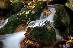 Fotografie - Vodné impresie - autorská fotografia. - 1362289