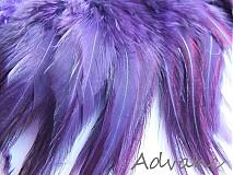 Kohútie jednofarebné fialová tmavá R11