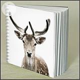 Papiernictvo - Zápisník JELEŇ  - 1548244