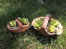 Dekorácie - košíček  vlnovkový na bylinky - 1607289