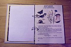 Papiernictvo - Denník pre umelecké duše - 1676571
